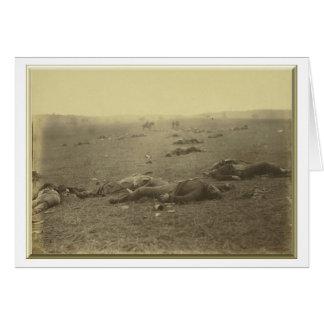 Una cosecha de la muerte Gettysburg Pennsylvania Tarjeton