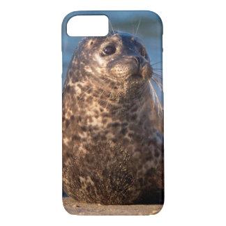 Una cría de foca que viene en tierra en la piscina funda iPhone 7