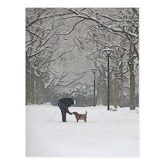 una cucharada de la nieve tarjetas postales
