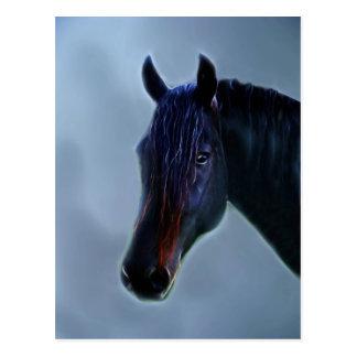 Una curiosidad de los caballos tarjeta postal