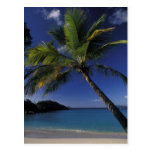 Una de las mejores playas del mundo; Bahía del tro Postal