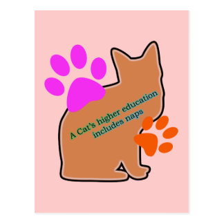 Una educación más alta de los gatos incluye siesta postal