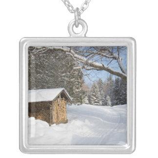 Una escena nevosa en la poca charca de Lyford de Colgante Cuadrado