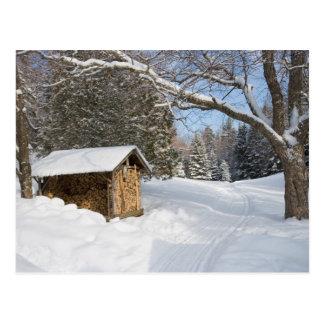 Una escena nevosa en la poca charca de Lyford de Tarjeta Postal