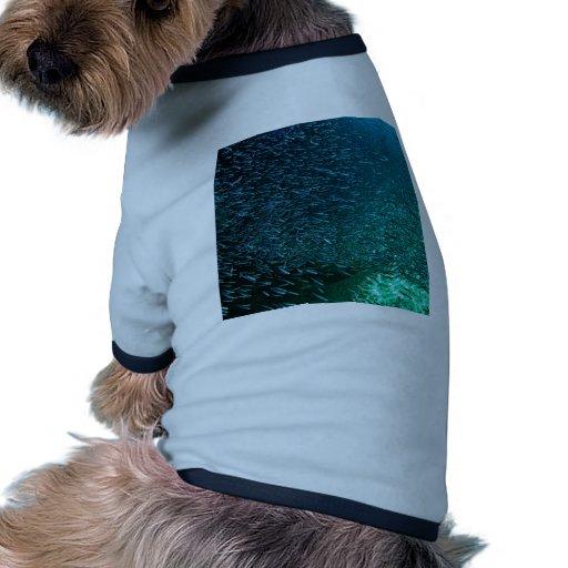 Una escuela de pescados en Cozumel Camiseta De Perrito