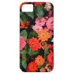 Una exhibición colorida e imponente de flores iPhone 5 Case-Mate cárcasa