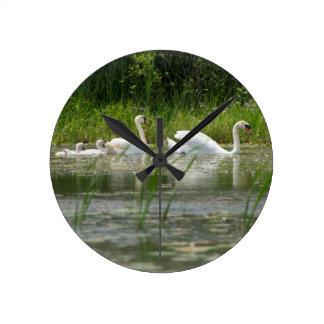 Una familia de cisnes nada en el río de Thunder Reloj Redondo Mediano