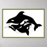 Una familia de la ballena poster