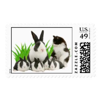 Una familia de sellos del conejo y de un poste del