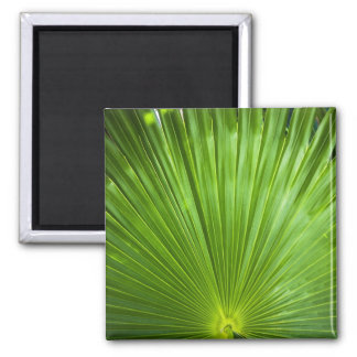 Una fan del verde imán cuadrado