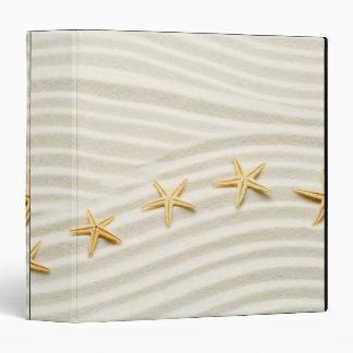 Una fila del unstraight de estrellas de mar