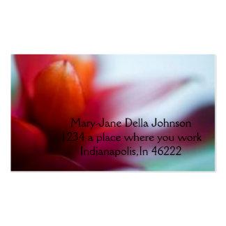 Una flor anaranjada roja tropical brillante del ba tarjeta personal