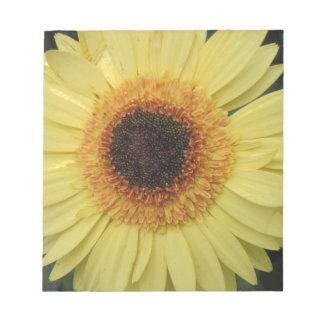 Una flor del resplandor solar blocs