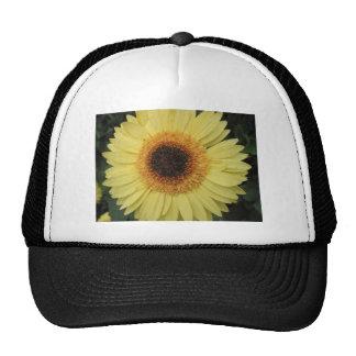 Una flor del resplandor solar gorro de camionero