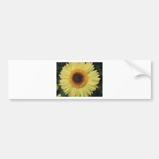 Una flor del resplandor solar pegatina para auto
