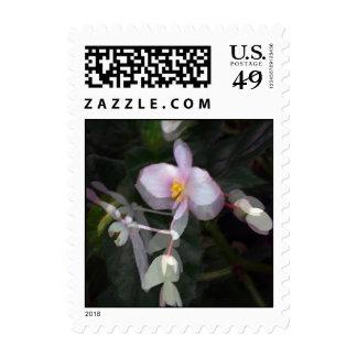 Una flor minúscula franqueo