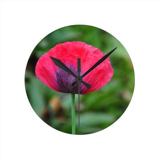 Una flor perfecta de la amapola reloj de pared