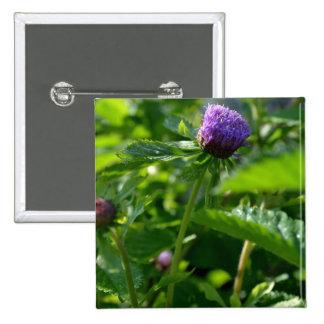 Una flor púrpura del jardín pin