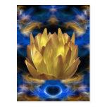 Una flor y reflexiones de loto del oro tarjetas postales