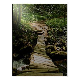 Una foto del puente de madera del bosque del paso