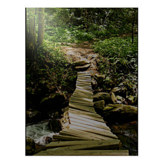 Una foto del puente de madera del bosque del paso postal
