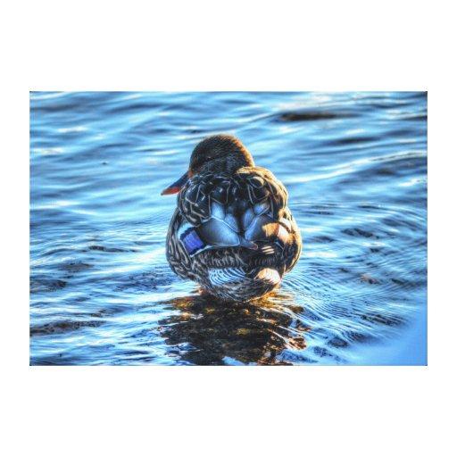 Una fotografía de la fauna de la bella arte del pa impresion en lona