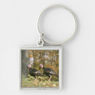 Una fotografía hembra-varón de los pares de llavero cuadrado plateado