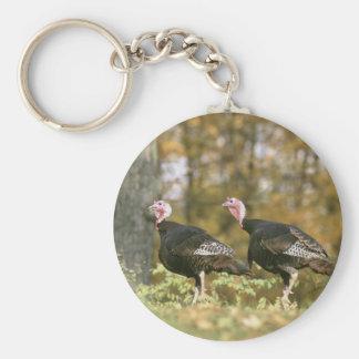 Una fotografía hembra-varón de los pares de llavero redondo tipo pin