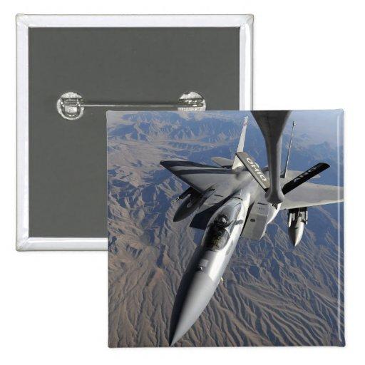Una fuerza aérea de los E.E.U.U.F-15 Eagle Pin