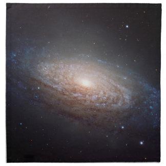 Una galaxia espiral en Leo Servilleta