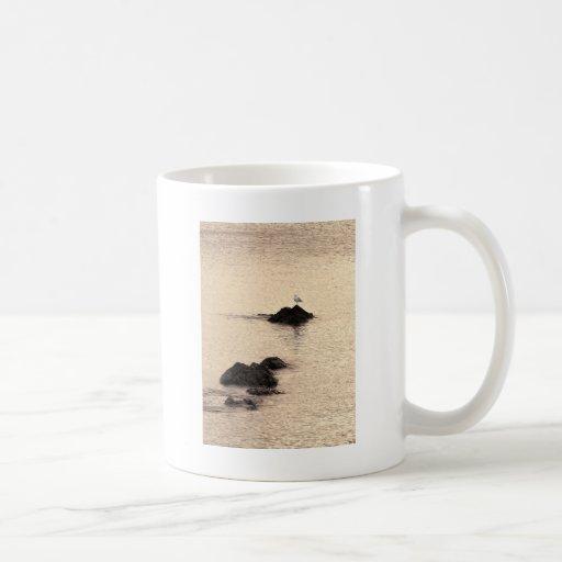 Una gaviota se coloca taza clásica