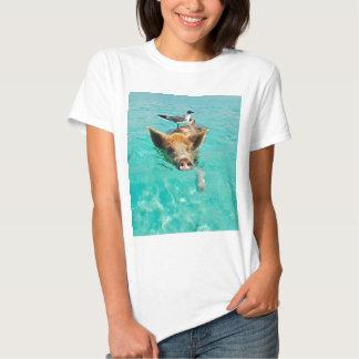 Una gaviota y un cerdo camisas