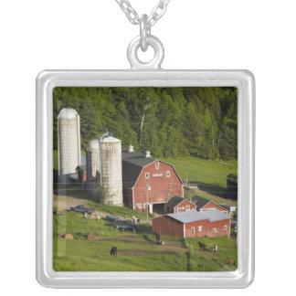 Una granja en el centro de Barnet Vermont Connec Joyeria Personalizada