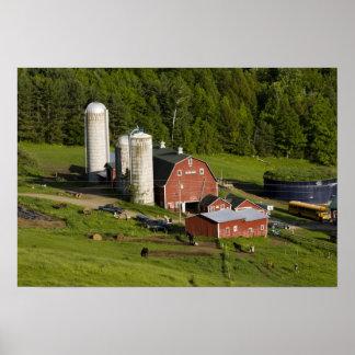Una granja en el centro de Barnet, Vermont. Connec Póster