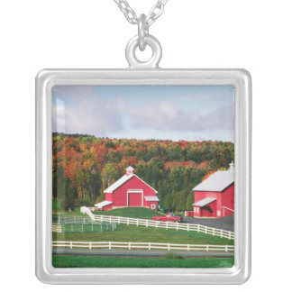 Una granja en Vermont cerca de Peacham. Colgante Cuadrado