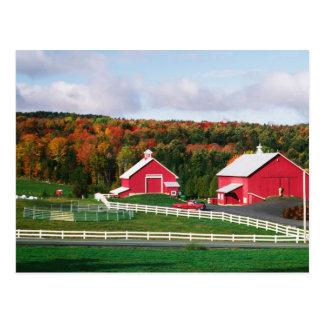 Una granja en Vermont cerca de Peacham. LANZAMIENT Tarjetas Postales