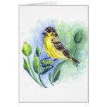 Una hembra del Goldfinch, lápiz de la acuarela Tarjeton