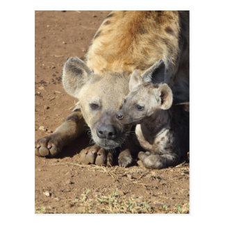 Una hembra manchó el Hyena y su cachorro, Kruger Tarjeta Postal