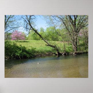 Una hermosa vista del río póster
