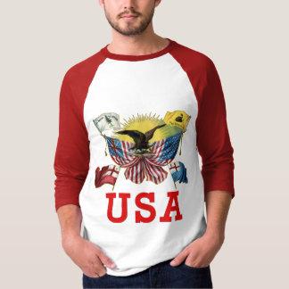 Una historia de banderas americanas en una remera