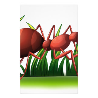 Una hormiga papelería personalizada