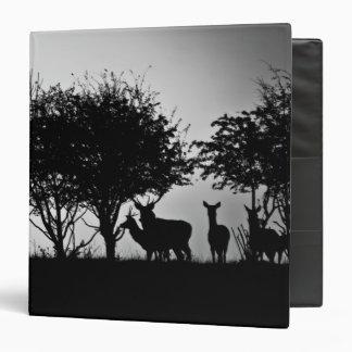 """Una imagen de algunos ciervos en la niebla de la carpeta 1 1/2"""""""