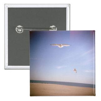 una imagen soñadora de las gaviotas que vuelan en  pin cuadrado