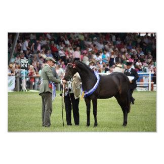 Una impresión de la foto de un caballo y de un jin