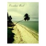 Una isla. Pernambuco, el Brasil Postal