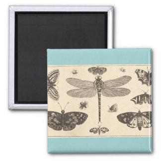 Una libélula, mariquitas, y mariposas imanes de nevera