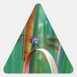Una libélula observada trullo con cattails pegatina triangular
