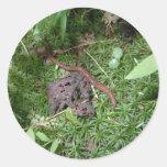Una lombriz de tierra pegatina redonda