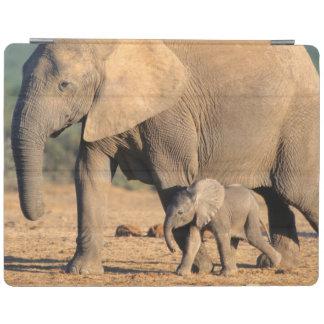 Una madre y un becerro del elefante africano en el cover de iPad