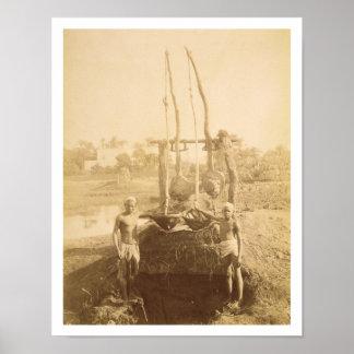 Una máquina egipcia de la irrigación en los bancos póster